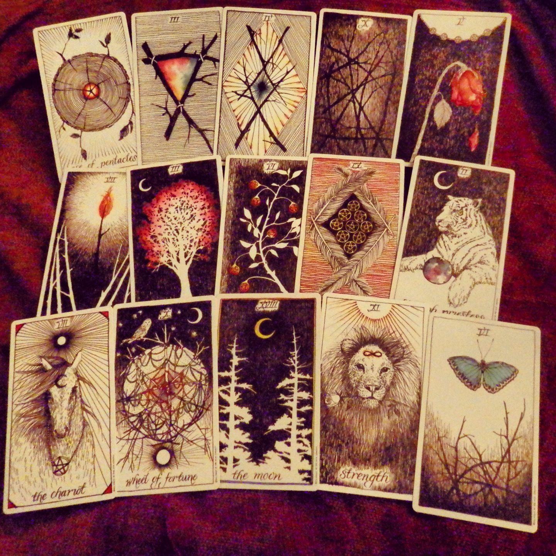 Wild Unknown Tarot Cards In 2019 Diy Tarot Cards Tarot