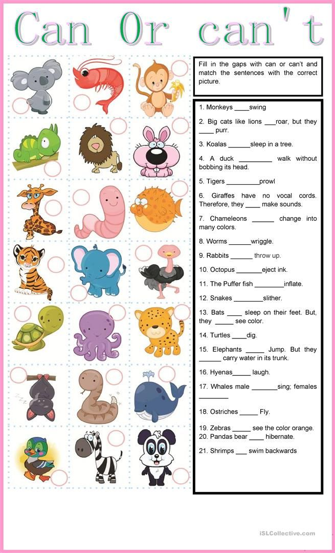 Can Or Can T Worksheet Free Esl Printable Worksheets Made By Teachers Animales En Ingles Material Escolar En Ingles Verbo Can