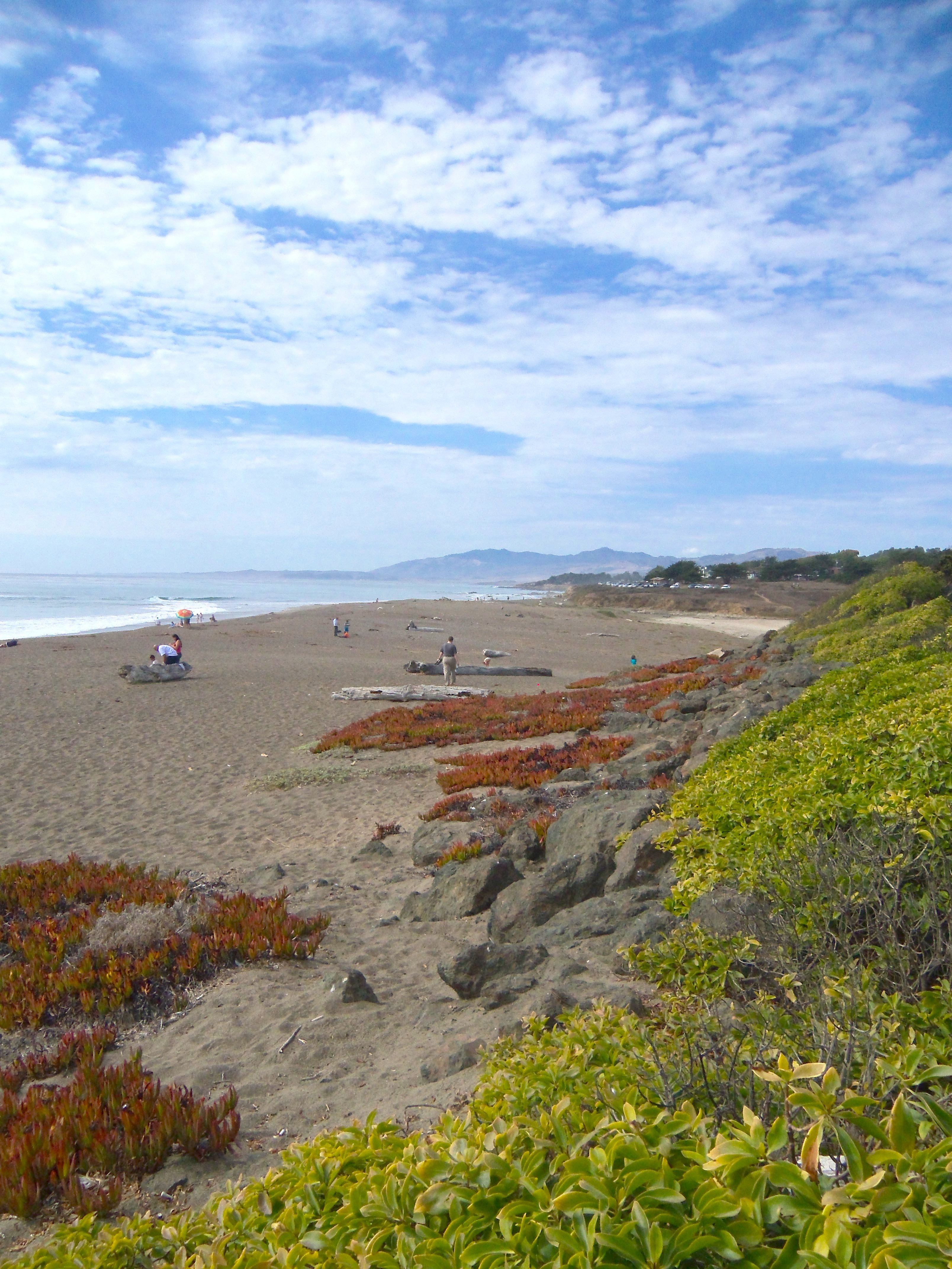 The Beautiful Moonstone Beach In Cambria Ca Road Trips