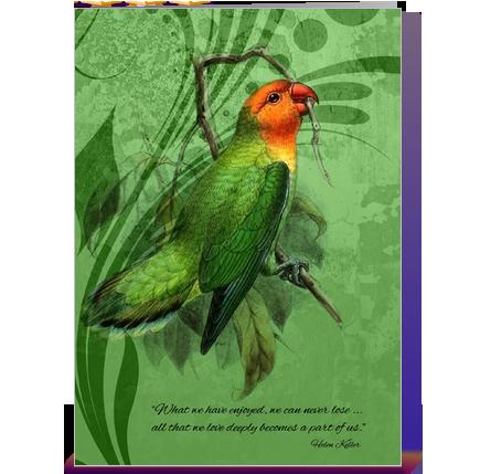 Quotes Loss Pet Bird Google Search Life Pets Pet Birds Birds