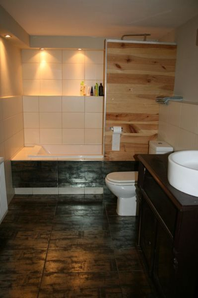 bath and shower together (photo from ad on gumtree)