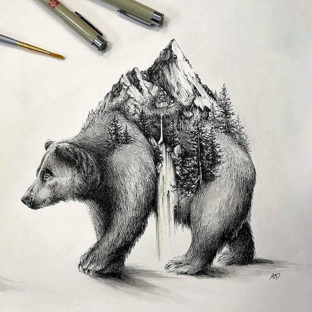 """Photo of Airship-Notizbücher auf Instagram: """"Ein Bär im wahrsten Sinne des Wortes rol…"""