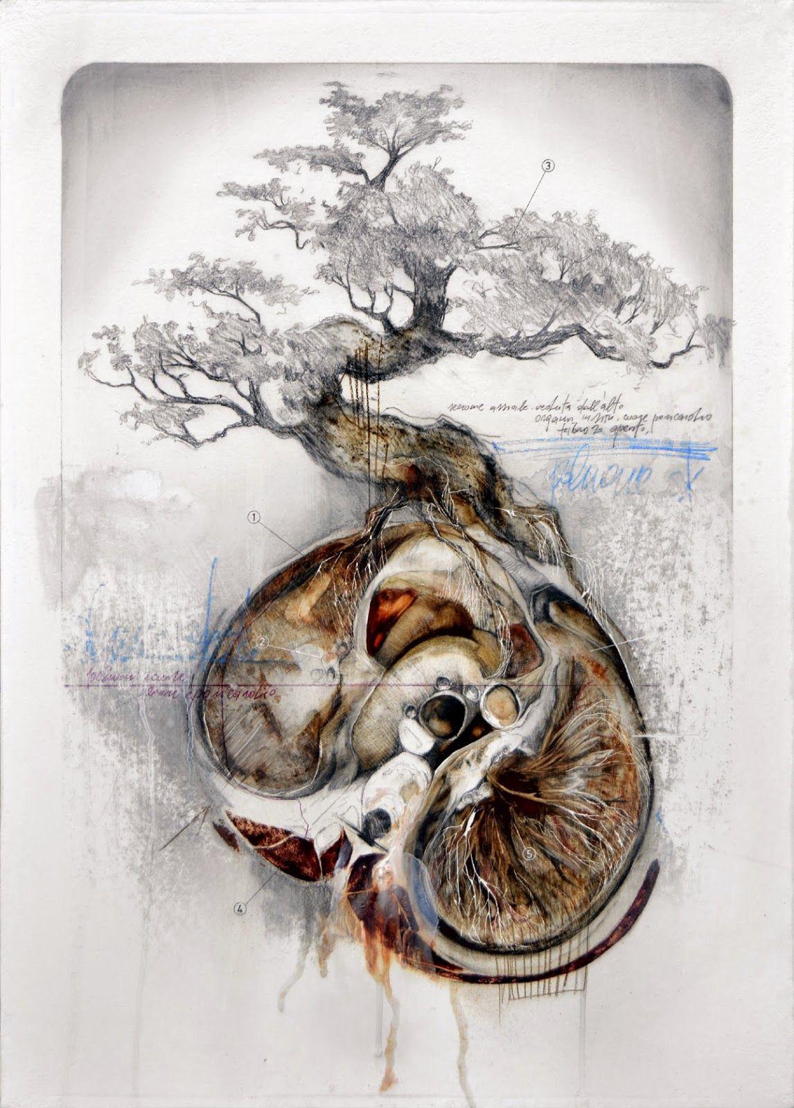 La anatomía y la naturaleza se unen en la ilustración de Nunzio Paci ...