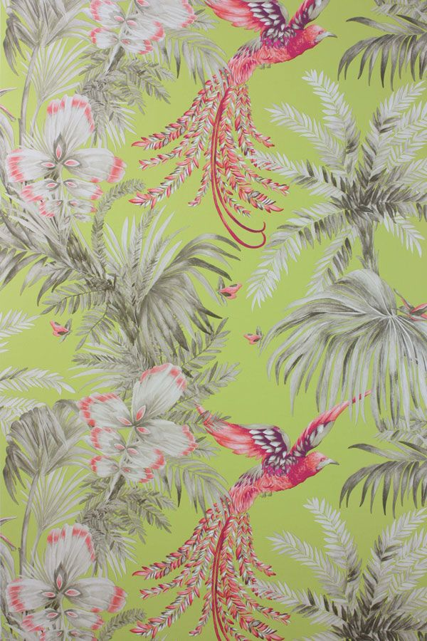 Wallpaper With Birds news: bird of paradise wallpaper & fabric | mw daily | matthew