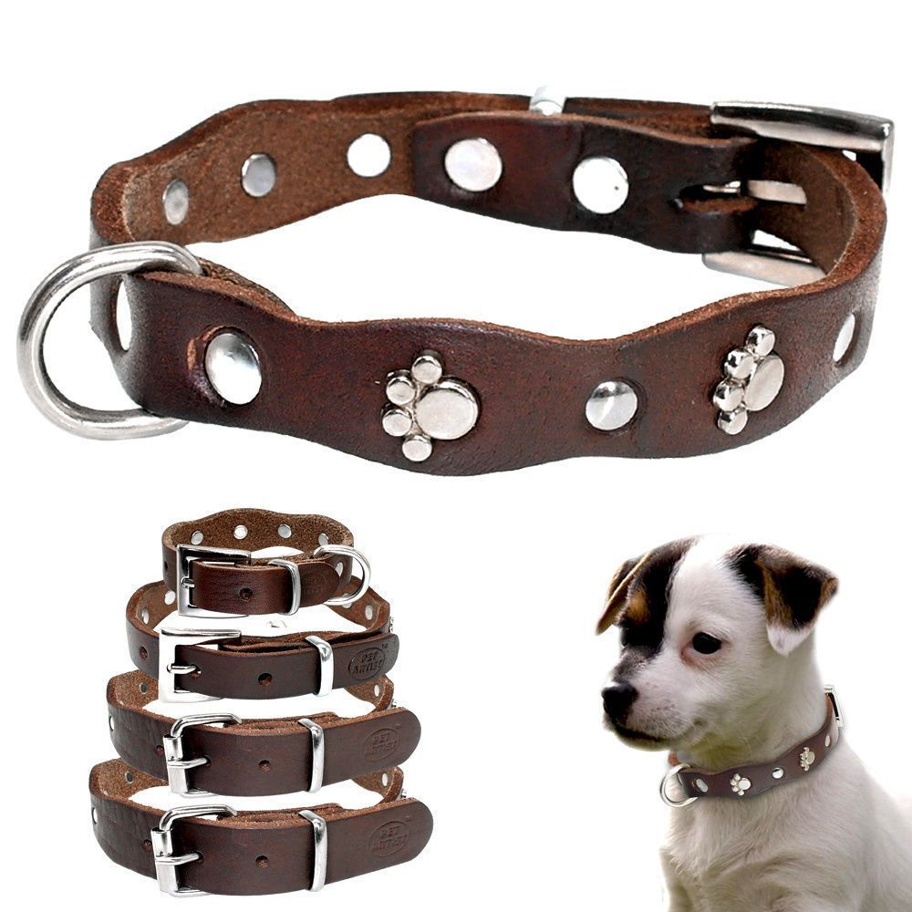 3 99 Paw Studded Genuine Leather Dog Collar For Puppy
