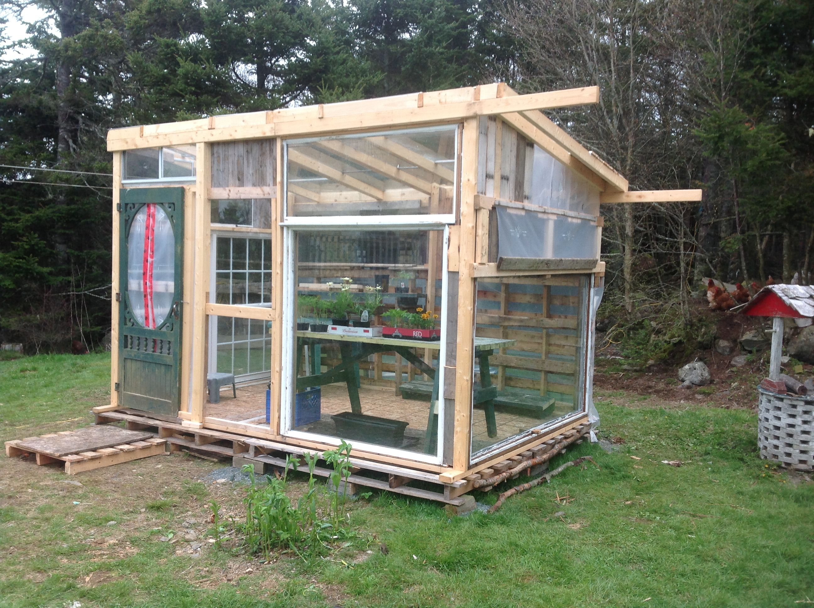 Image result for greenhouse from pallets and old windows ...