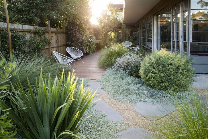 Pf residence woolahra nsw garden design pinterest for Paisajismo patios