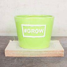 lime green garden pot — MUSEUM OUTLETS  #ceramicpot   #lime   #gardening