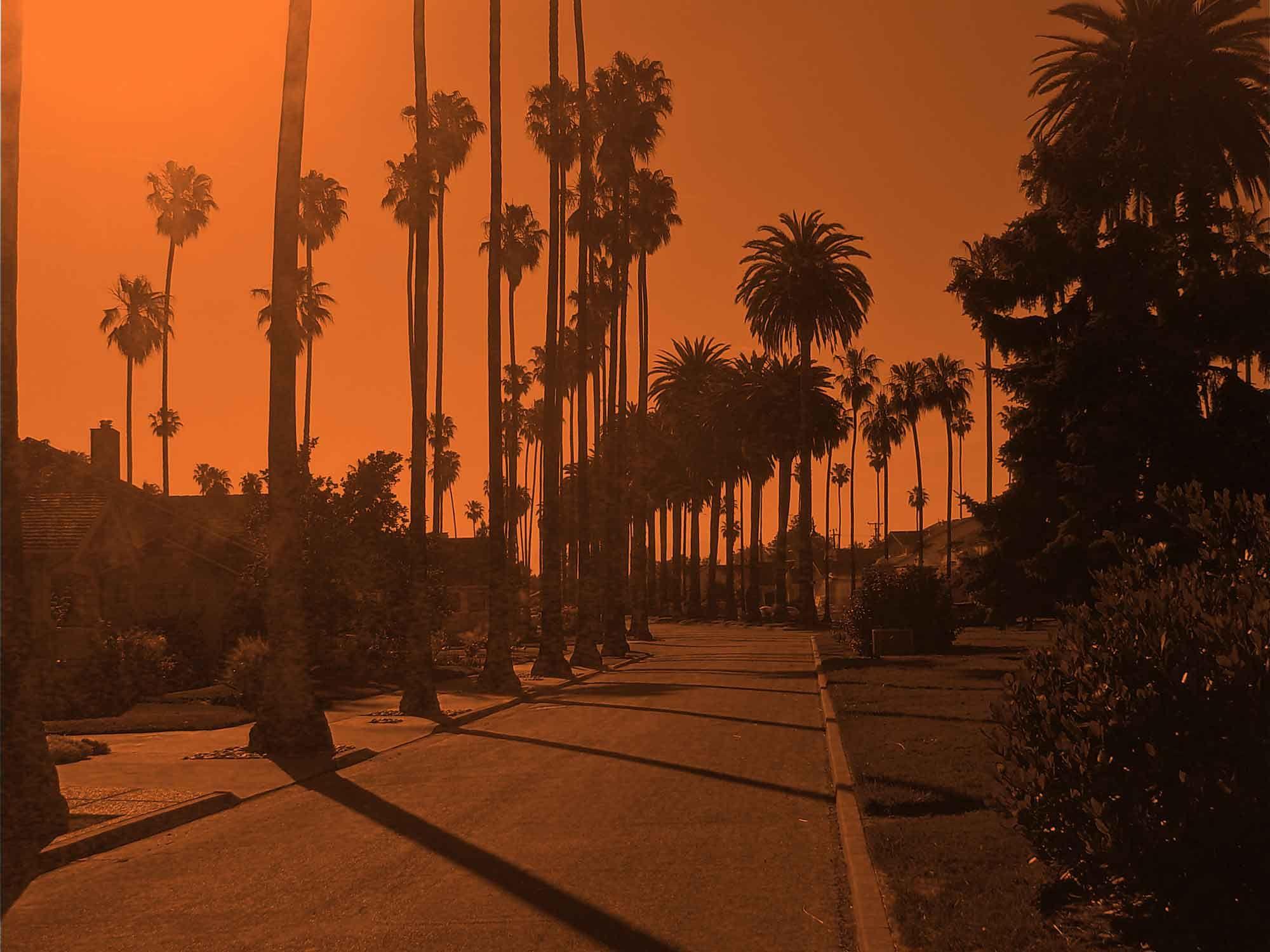 Creepy La Los Angeles Halloween In