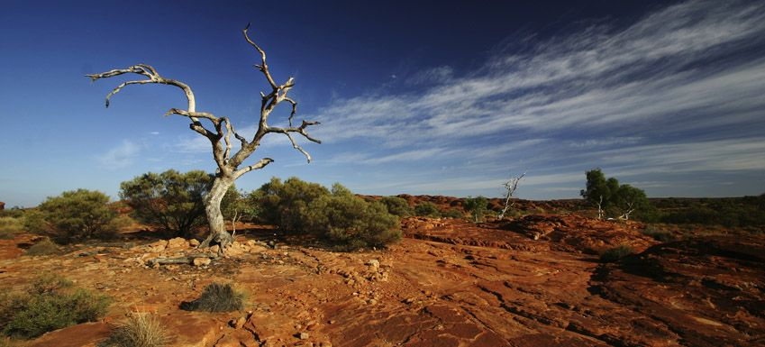 Australian landscape mother nature is awesome for Landscapers adelaide south