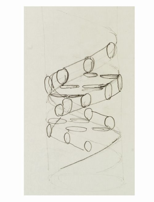 First sketch of the DNA double helix, drawn by Francis Crick - double first