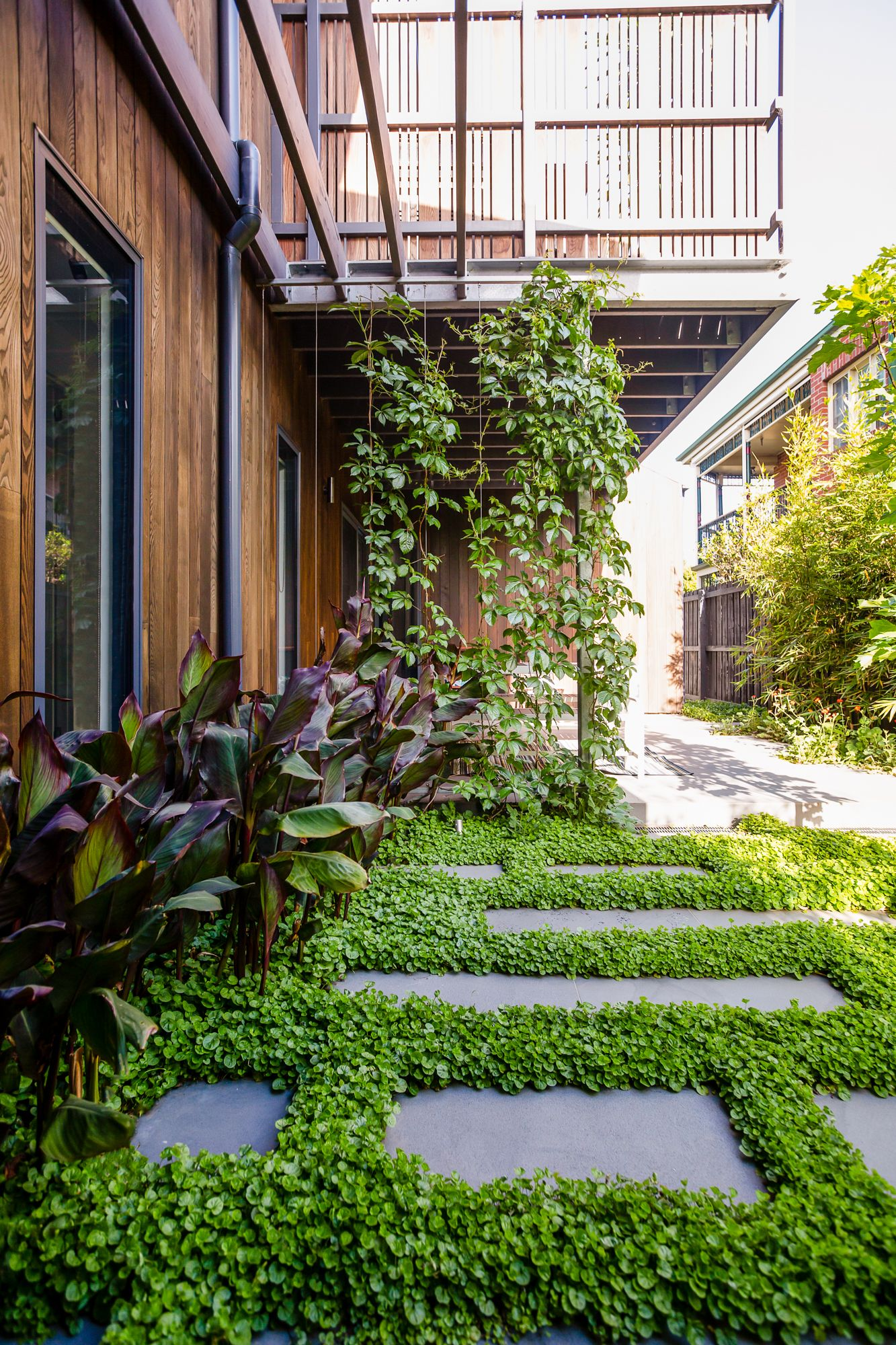 Williamstown Foreshore Project By Lisa Ellis Gardens Landscape Design Melbourne Landscape Design Modern Garden