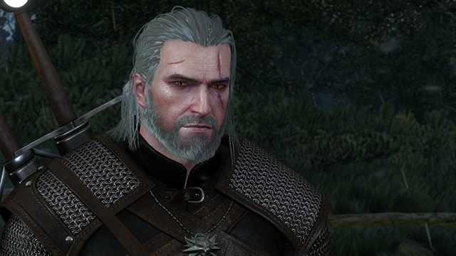 The Witcher 3 Wild Hunt Nvidia Hairworks Wet Hair