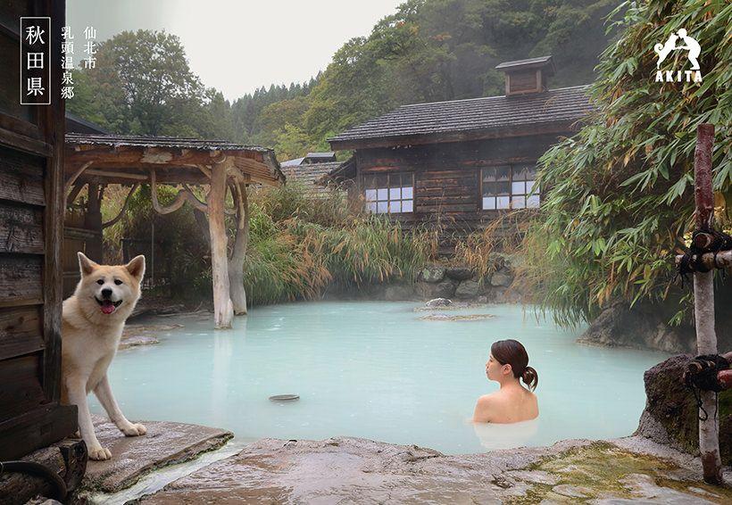 出典元 美の国あきたネット 温泉 サウナ 温泉 日本 観光