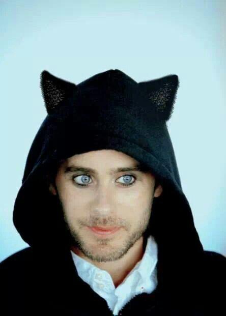 Here kitty, kitty!!!Love those eyes :)