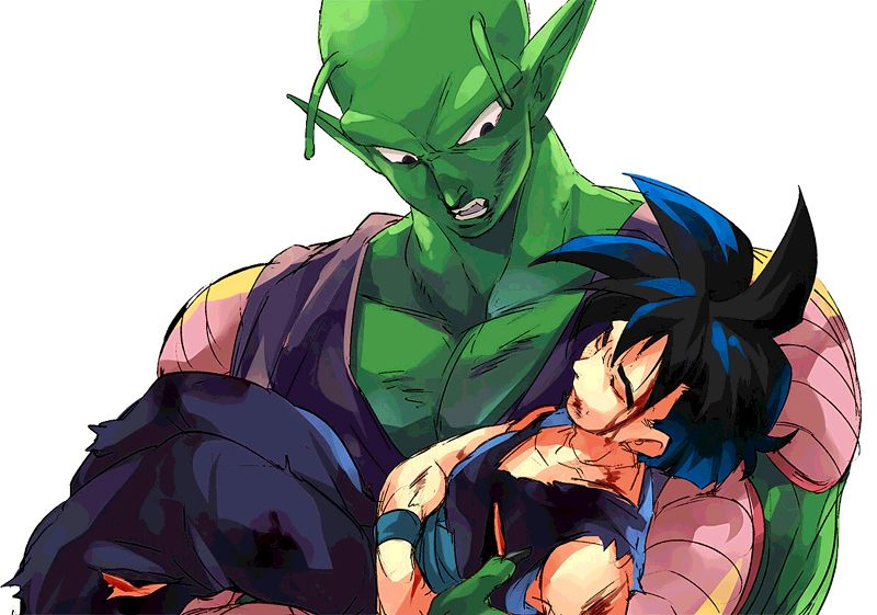 Image result for piccolo