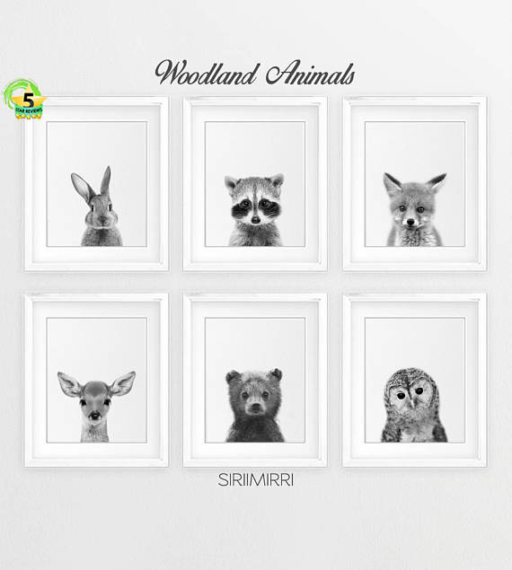 Woodland nursery decor black white baby animals set 6 bunny