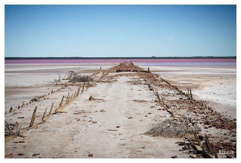 Resultado de imagen para las salinas grandes en la provincia de la pampa