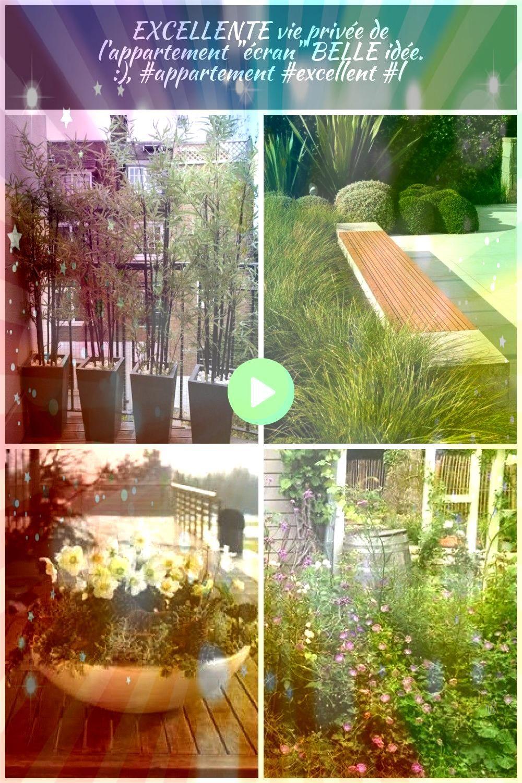 vie privée de lappartement écran BELLE idée    Pflanzen Terrasse EXCELLENTE vie privée de lappartement écran BELLE idée    Balco...