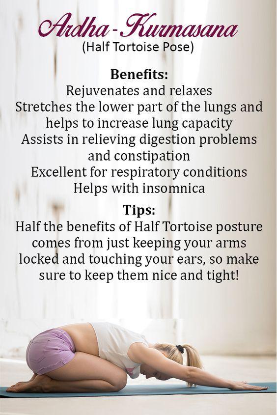 Pin By Shivali Agrawal On Yoga Wellness Yoga Yoga Training Yoga Anatomy