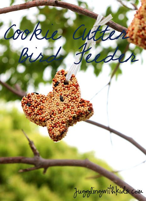 Cookie Cutter Bird Feeder....so simple to make!  All you need is unflavored gelatin and bird seed.  #birdseed #cookie cutter #ornament #birdfeeder