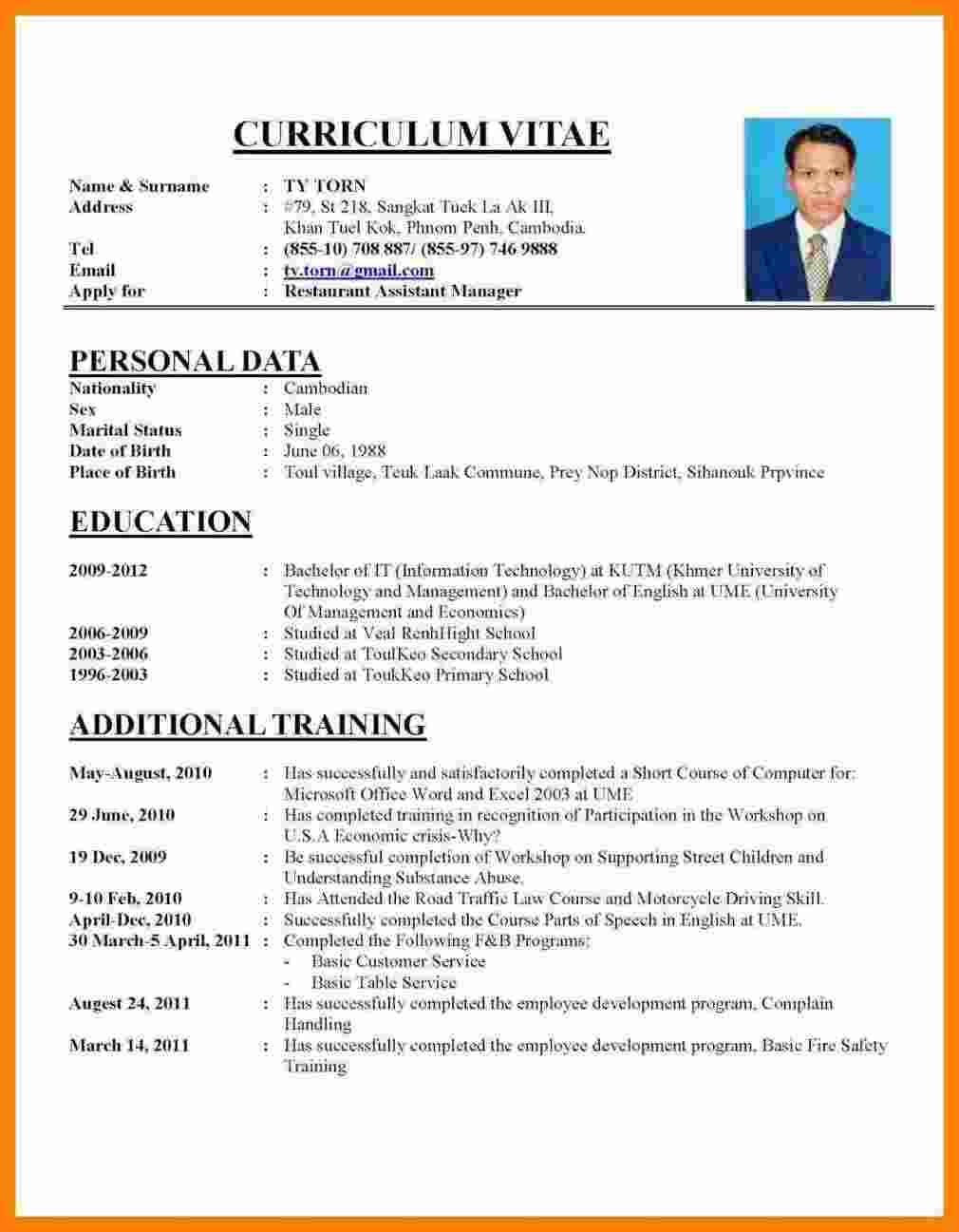 cv template job application