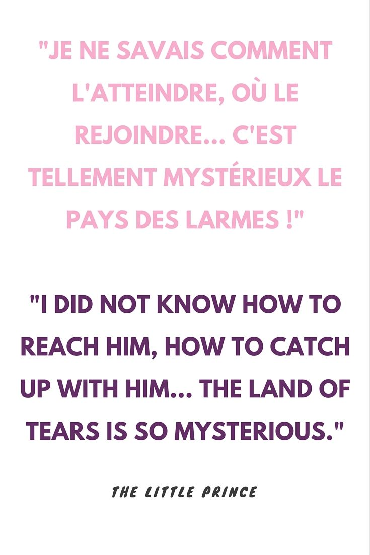 I Did Not Know How To Reach Him How To Catch Up With Him The Land Of Tears Is So Mysterious To Learn More About The Little Prince Watch The French Possu