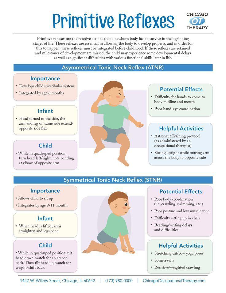 Primitive Reflexes Infographic