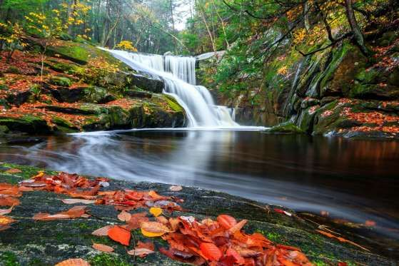 4.  See New England in the Fall - Bryan Bzdula/Moment RF/Getty Images
