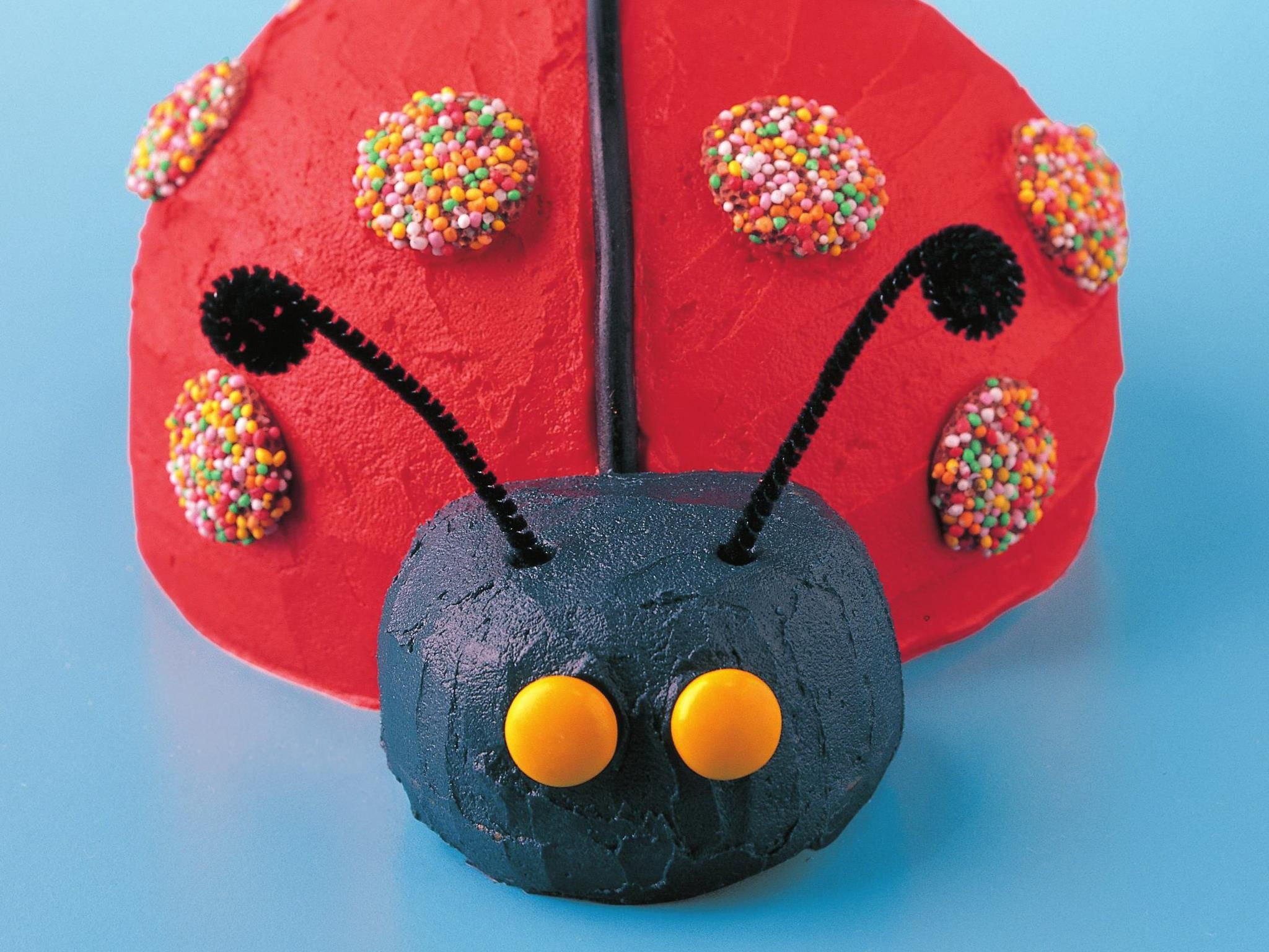 Made Famous In Our Ever Popular Womens Weekly Birthday Cake Book The Ladybird Is Surprisingly Easy To Decorate And Looks Marvellous