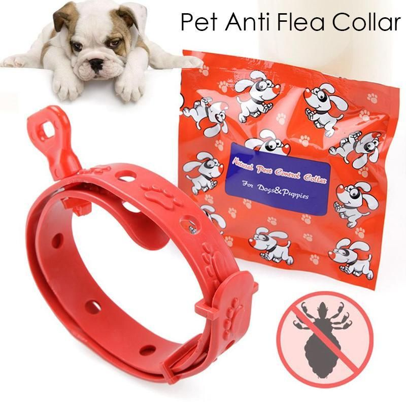 Red Cat Dog Collar Summer Anti Mosquito Collar Pet Cat Collar Anti Flea Tick Mite Pest Flea Dog Rubber Teddy Dogs Cats Collars Teddy Dog Pets Cat Collars