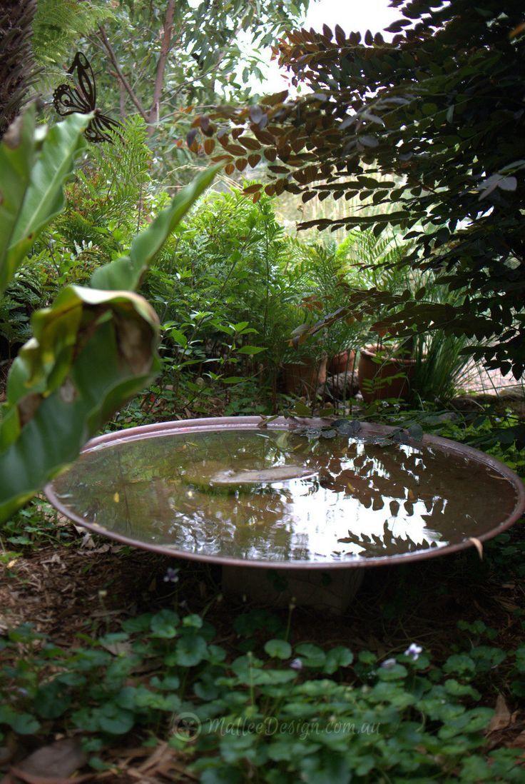 Mallee Design gebürtiges australisches Gartendesign. Wartung des Southern Sydney Bulli ... - #australisches #Bulli #des #Design #GartenDesign #gebürtiges #Mallee #Southern #Sydney #Wartung #einheimischepflanzen