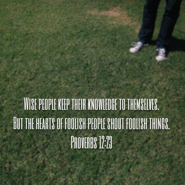 Proverbs 12:23