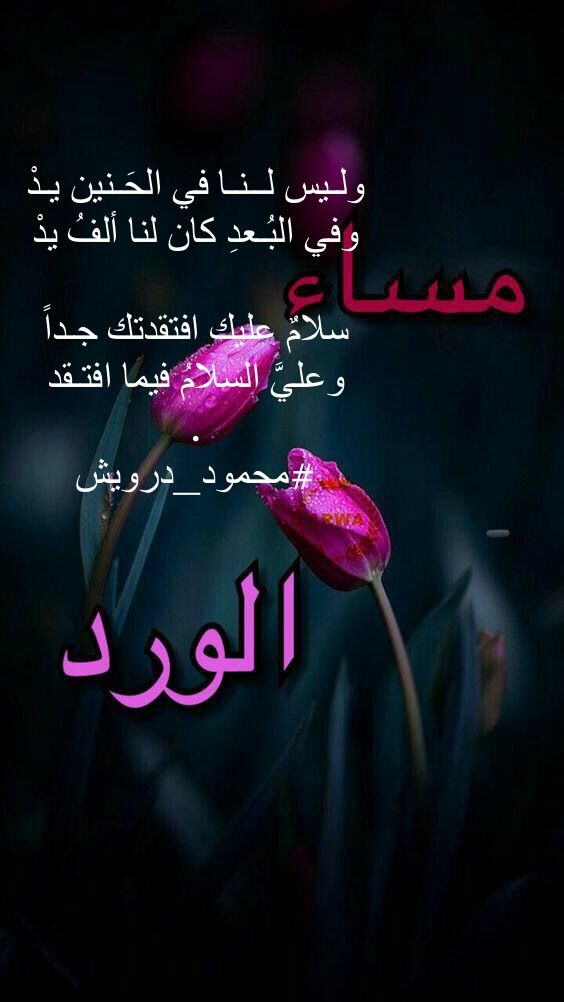 Pin By Souad Ramzi On كلمات Good Morning Gif Good Evening Islamic Pictures