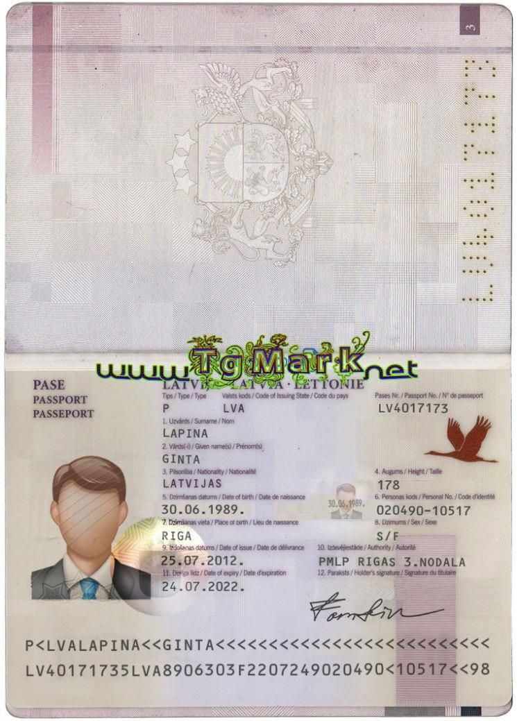 High Quality Template Scan Effect Multiple Backgrounds Hologram Passport Id Card Driving License Front In 2020 Passport Online Editable Template Passport