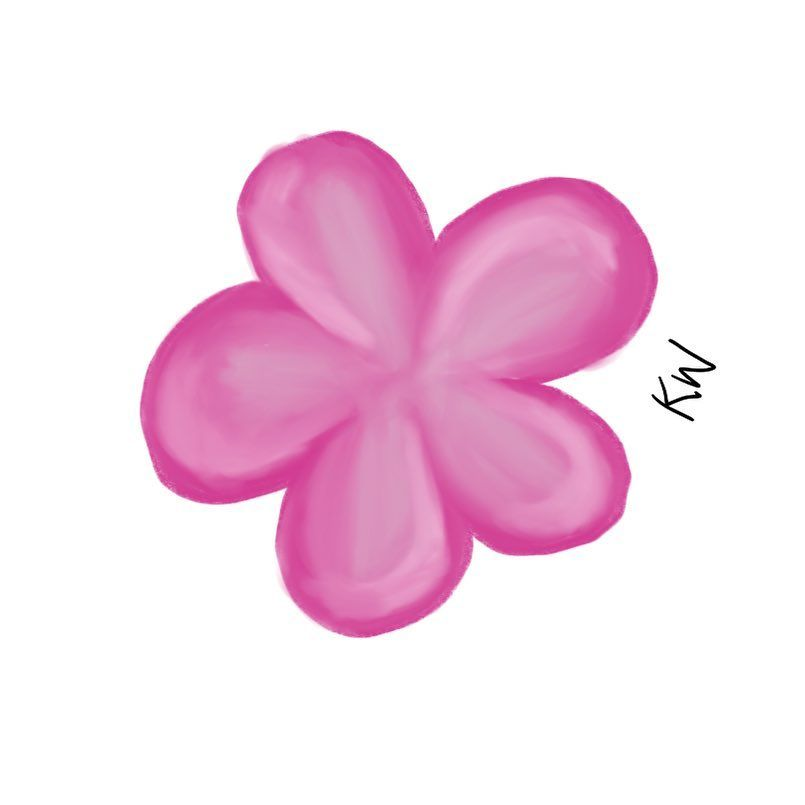 Pink Frangipani Flower I Will Be Uploading The Video Of The Drawing Process On My Youtube Channel Soon The Link For My C Drawing Process Small Designs Drawings