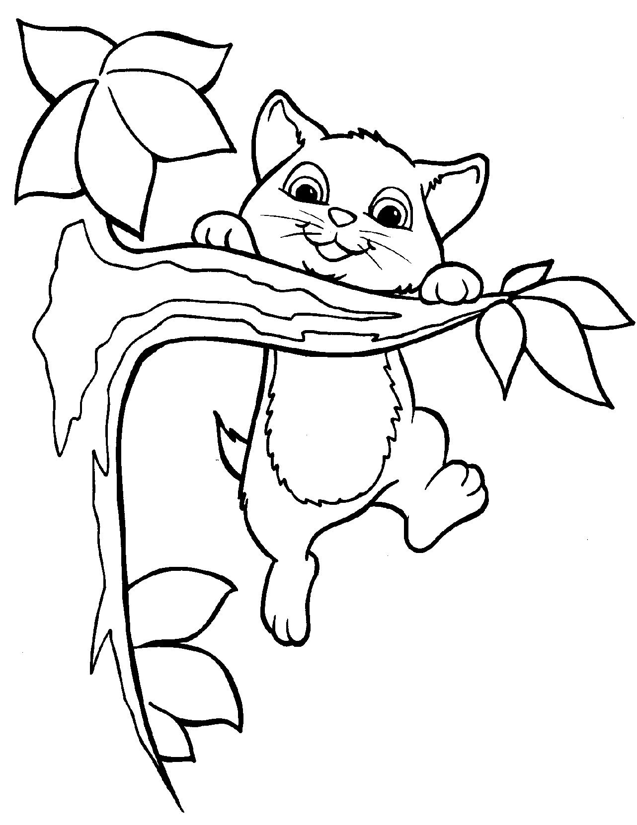 Kitten In A Tree Coloring Page For Teens And Adults Disegni Da