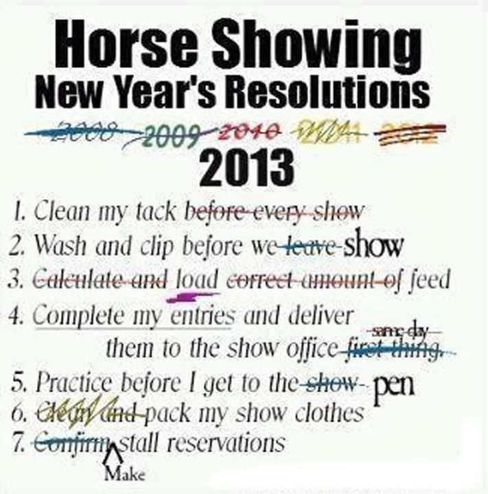 New Year's Resolutions For Any Horse Lover There's Always 40 Cool New Year Resolutions Quotes About Love