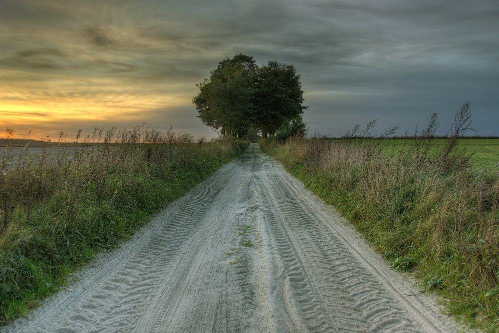 Polne drogi