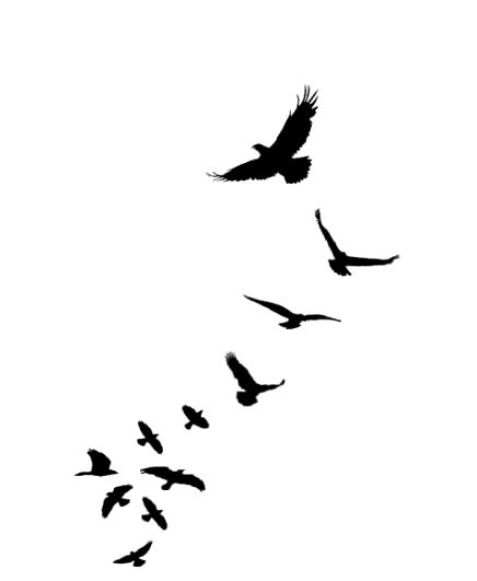 Photo of Tatouage pour hommes sur les côtes thoraciques a fait 47 idées # tatouage – tatouage pour hommes …