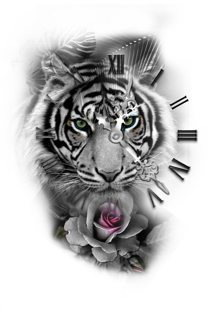 Photo of Tiger with roman tattoo rose tattoo design # with # roman # pink color …