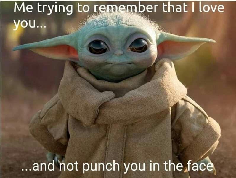 Pin By Jamie Maness On Lol In 2020 Yoda Meme Star Wars Memes Yoda