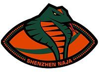 Shenzhen Naja China Arena Football League Shenzhen China