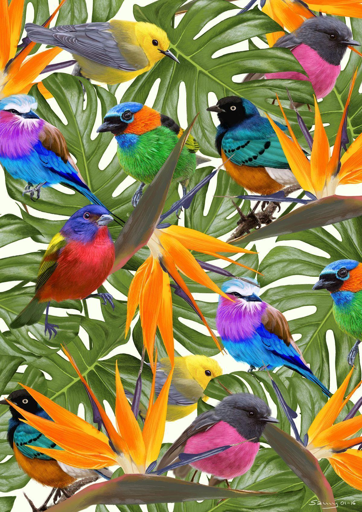 Birds of Paradise (Procreate-iPad Pro)