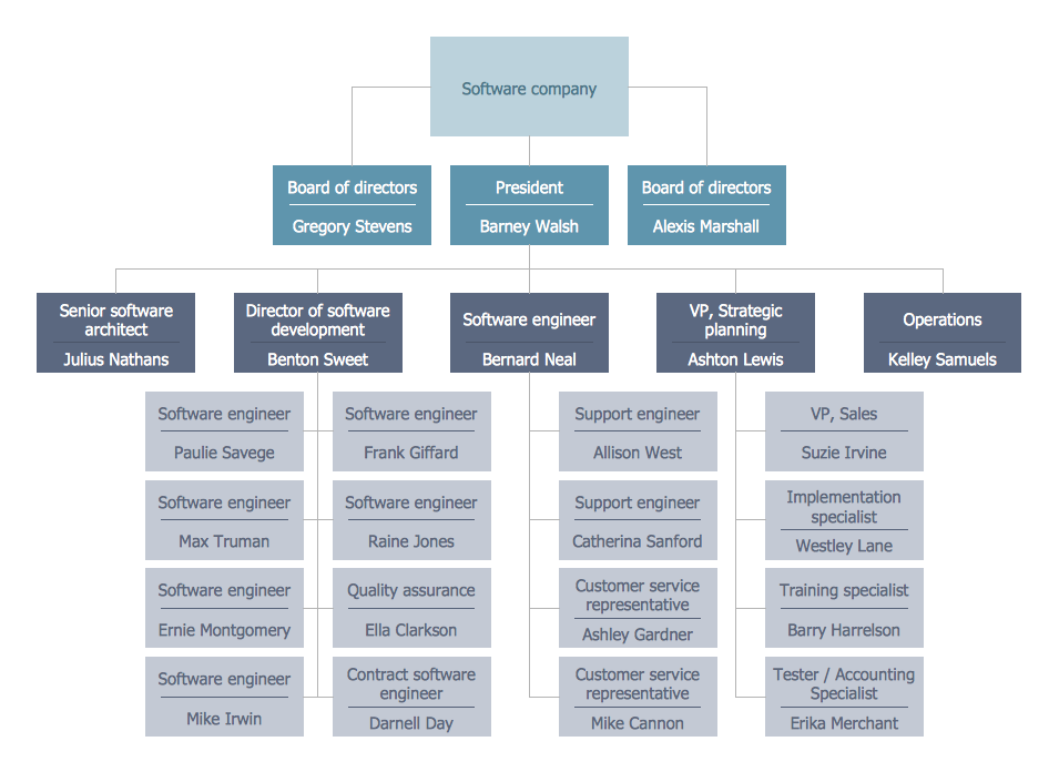 Example  Software Company Org Chart This Diagram Was Created In