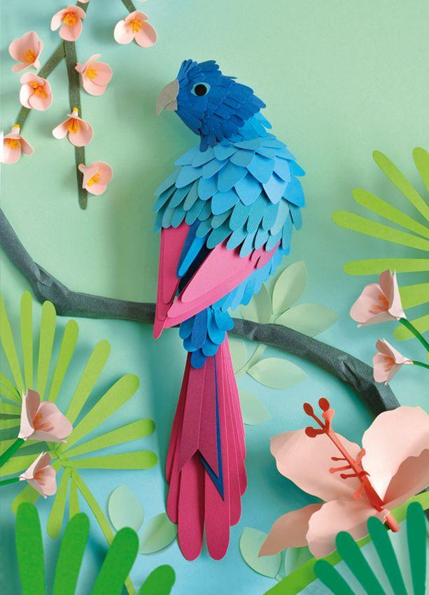 Tropische vogel, vrij werk