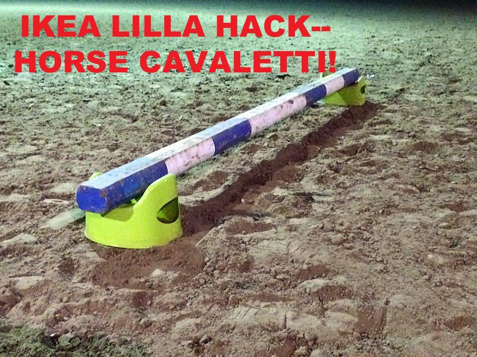 lilla children 39 s potty green horse barns and horse. Black Bedroom Furniture Sets. Home Design Ideas