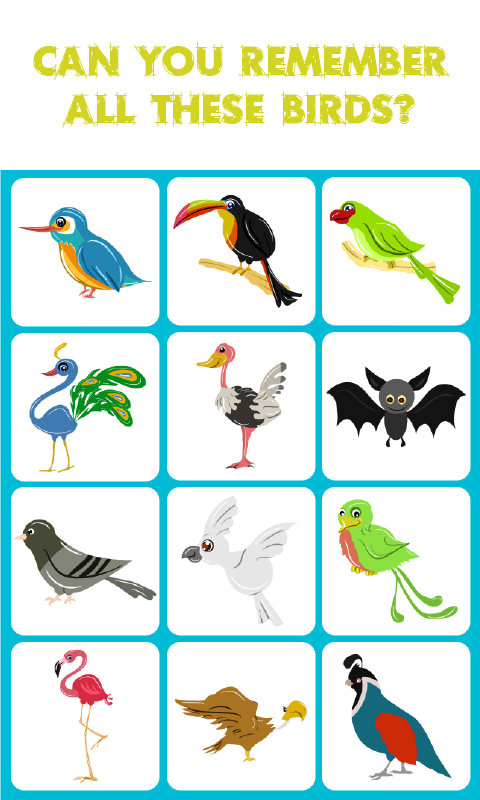 Birds Match: Memory Game is a concentration-style educational ...