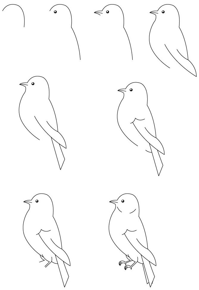 How To Draw A Bird Bird Drawings Cool Easy Drawings Simple Bird Drawing