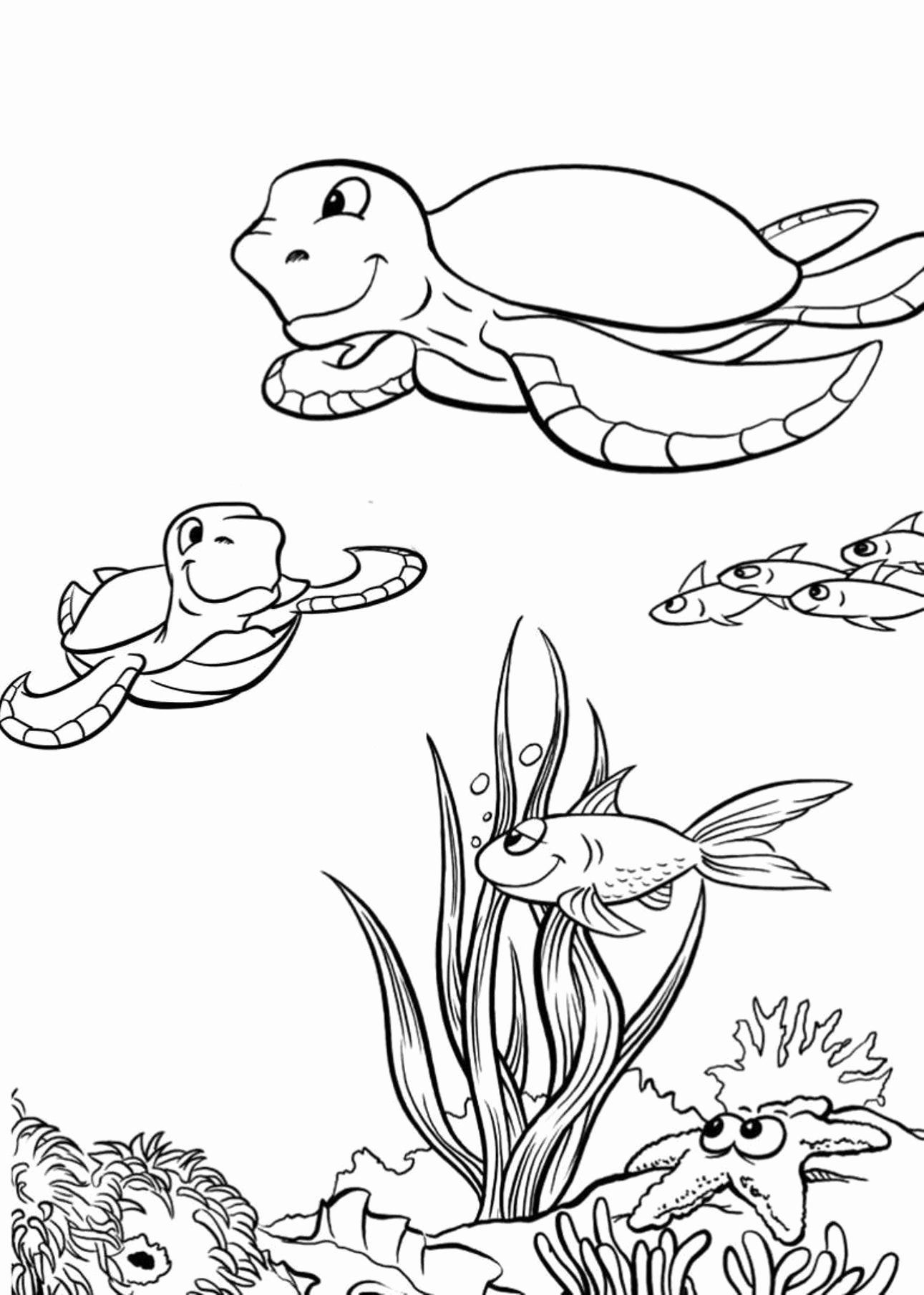 Coloring Pages Animal Habitats in 2020 Turtle coloring